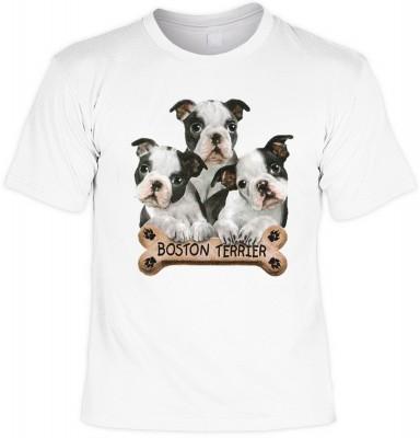 Boston terriers mit der Artikel-Nr.: HK_Mot_02_11181-P15<b>Biker - Motiv T-Shirt</b><br><br><br><b><u>Angaben zum Produkt vom Hersteller:</u><br><br><b><i>Das Material ist 100% Baumwolle</b><b>Die Tshirts haben ein Schulter zu Schulter Nackenband für bess