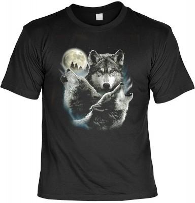 <p>F&uuml r alle Freunde der Wolfe.</p><p>So wie man sich das immer vorstellt,</p><p>wenn W&ouml lfe den Mond anheulen.</p>