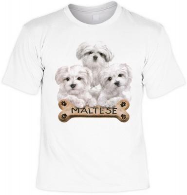 Maltese with bone mit der Artikel-Nr.: HK_Mot_02_11032-P15<b>Biker - Motiv T-Shirt</b><br><br><br><b><u>Angaben zum Produkt vom Hersteller:</u><br><br><b><i>Das Material ist 100% Baumwolle</b><b>Die Tshirts haben ein Schulter zu Schulter Nackenband für be